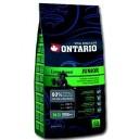 Ontario Junior Large Breed