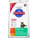 Feline Indoor Adult  CAT